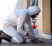 Professional Pest Control in Lagos, Nigeria