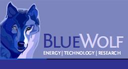 bluewolf logo