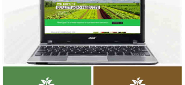 Agro-Allied Business Logo, Flyer, Stationery and Website Design